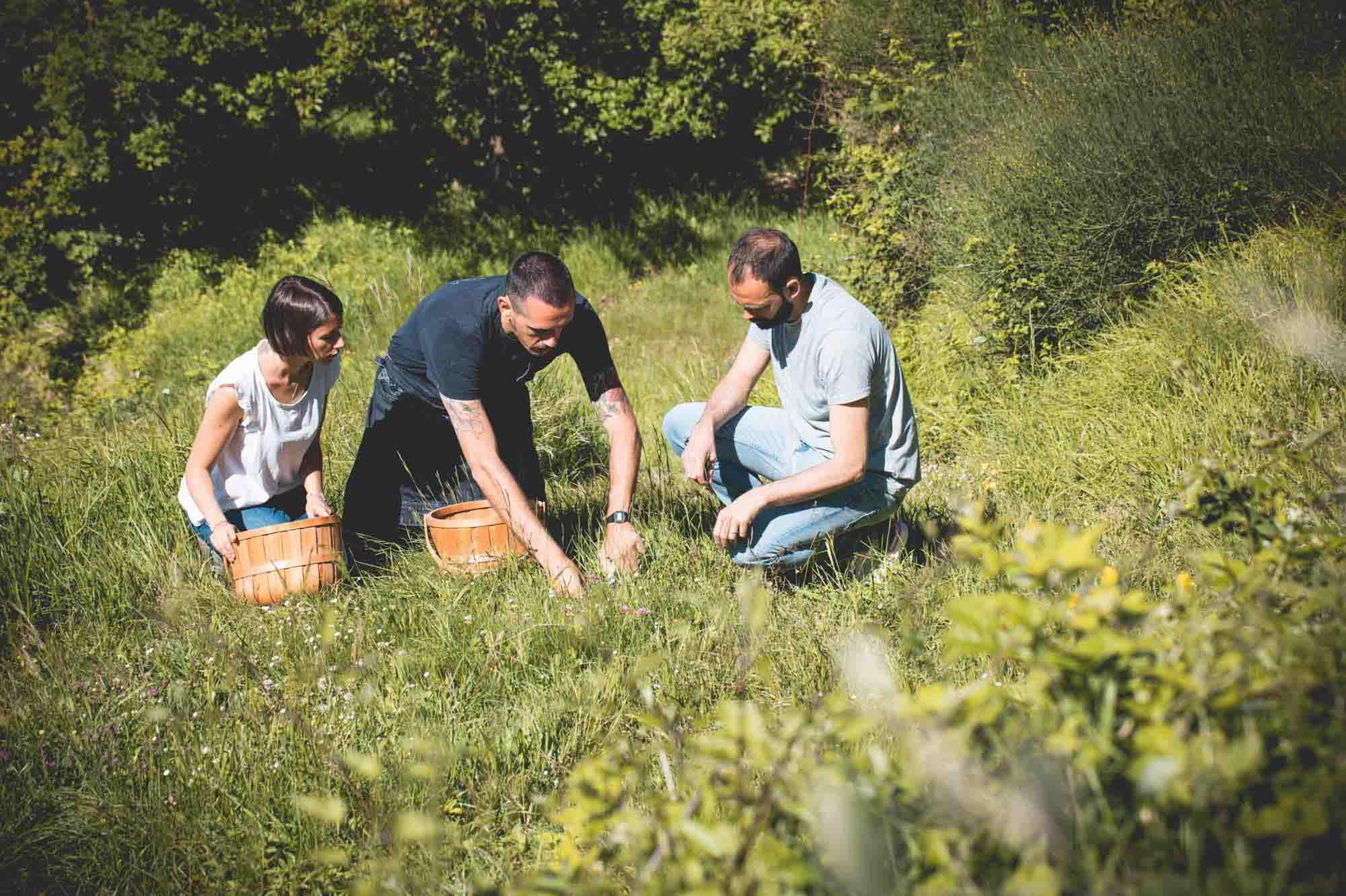 esperienza foraging experience