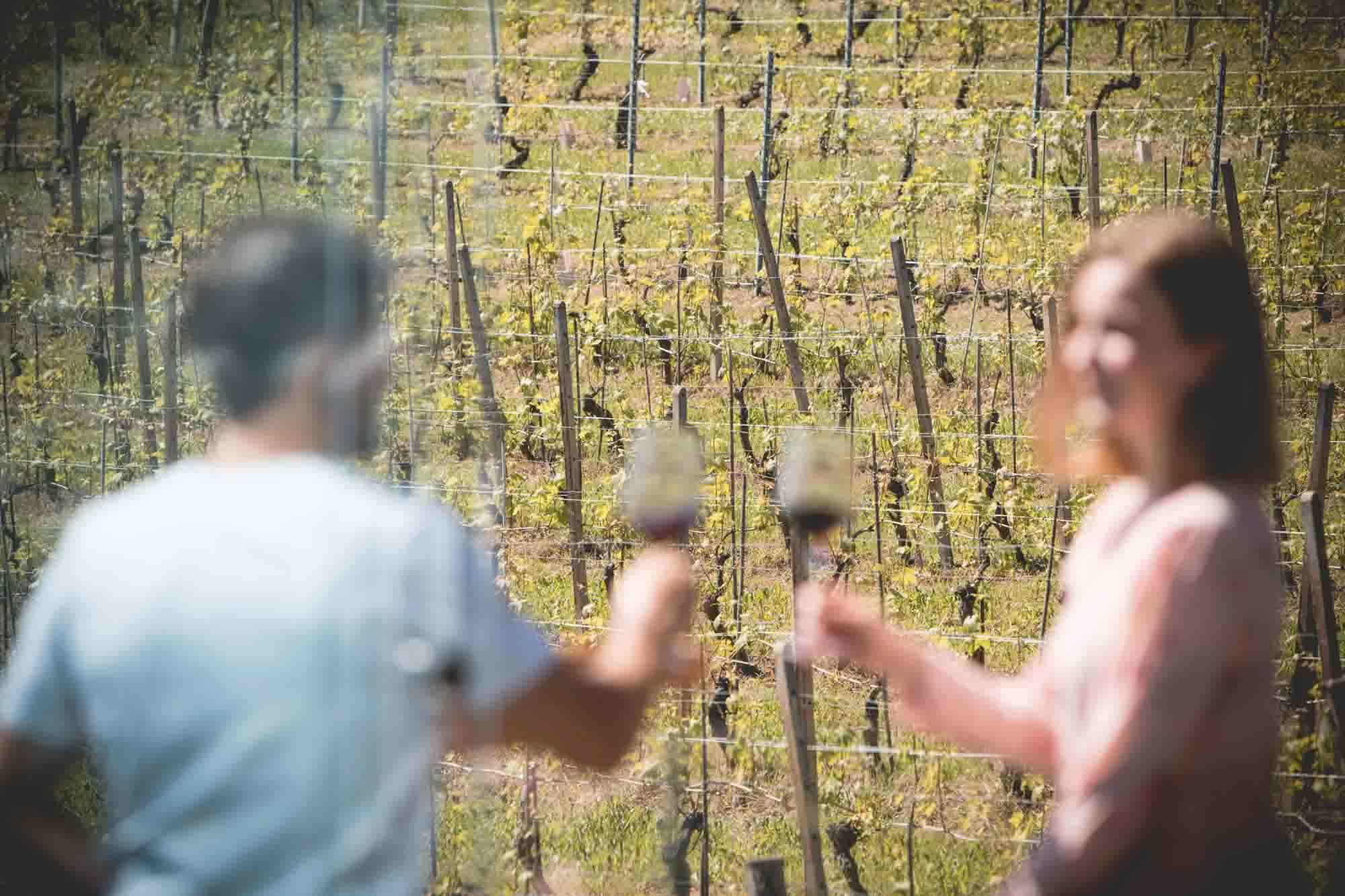 pacchetto esperienza food and wine retreat